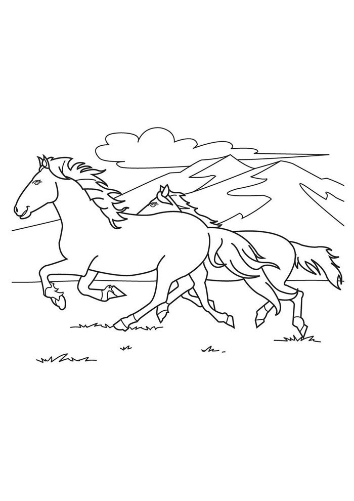 Horse coloring page 34