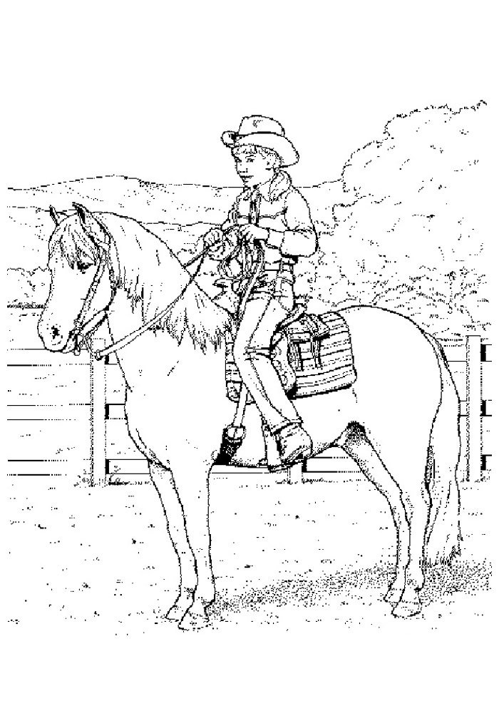 Horse coloring page 38