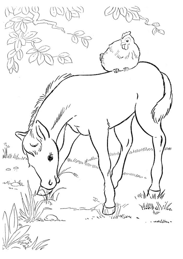 Horse coloring page 39