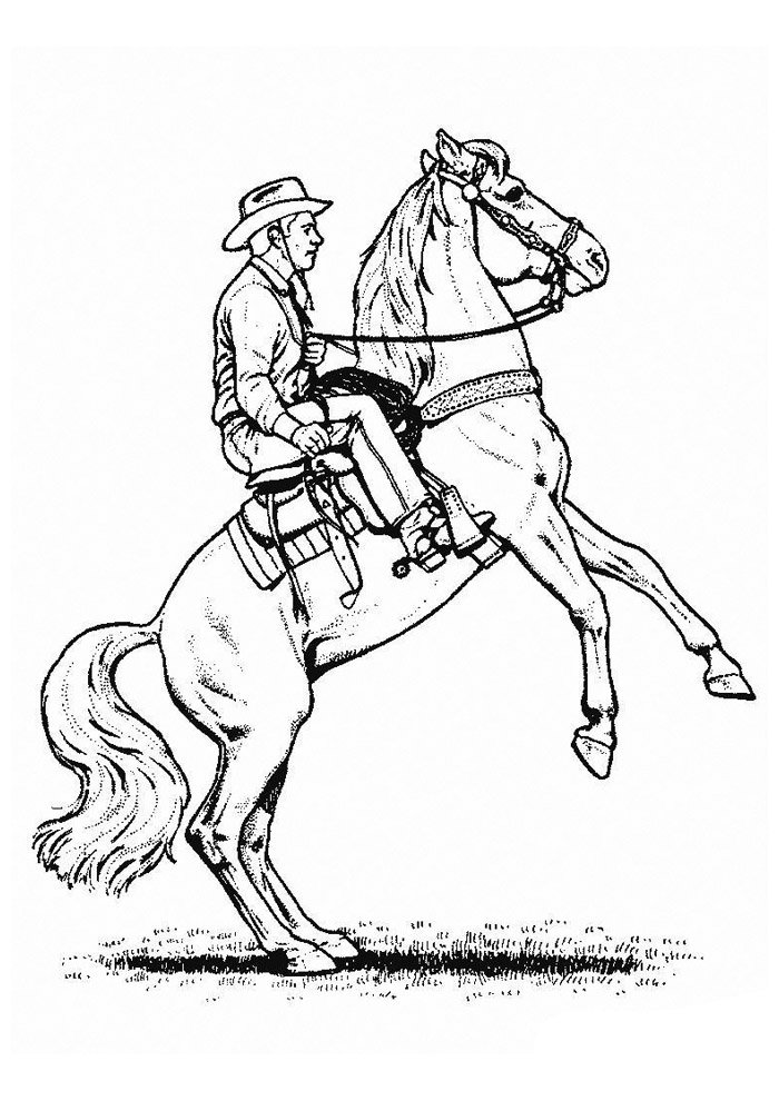 Horse coloring page 45