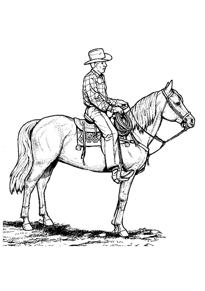 Horse coloring page 46