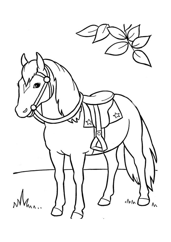 Horse coloring page 47