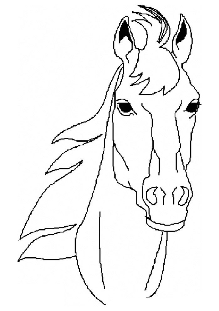 Horse coloring page 61