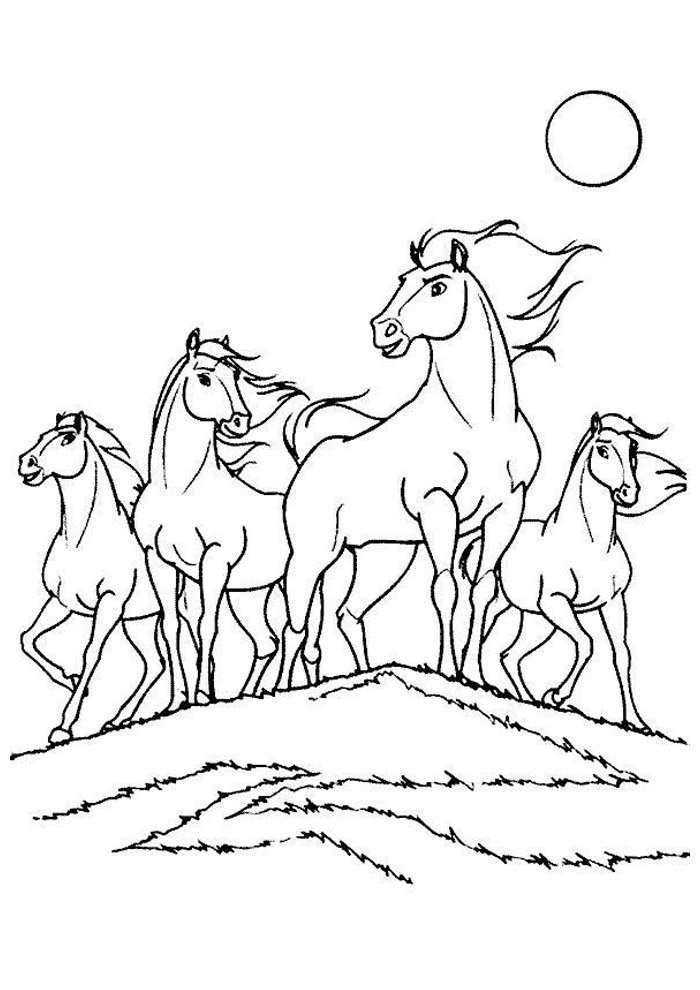 Horse coloring page 62