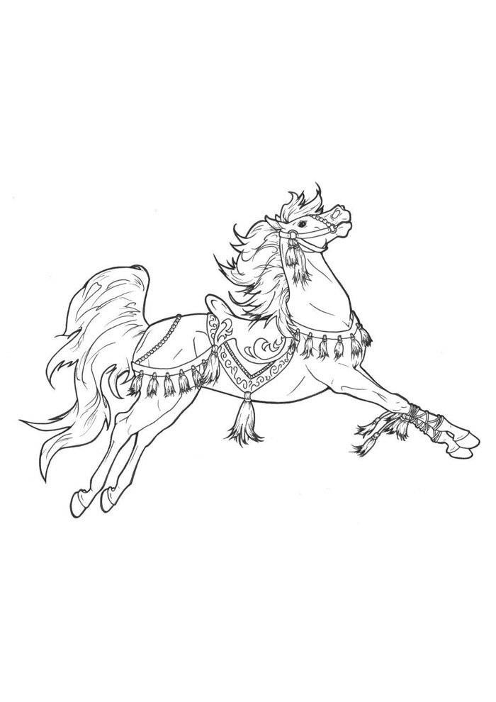 Horse coloring page 64