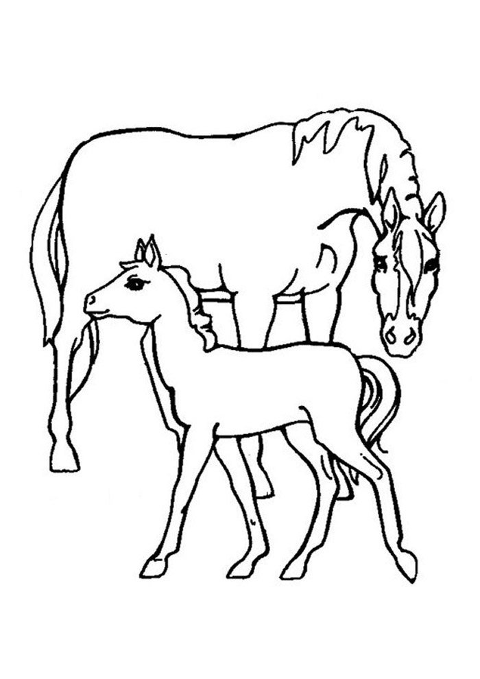Horse coloring page 68