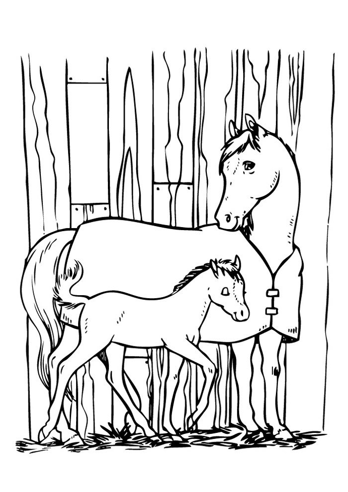 Horse coloring page 71