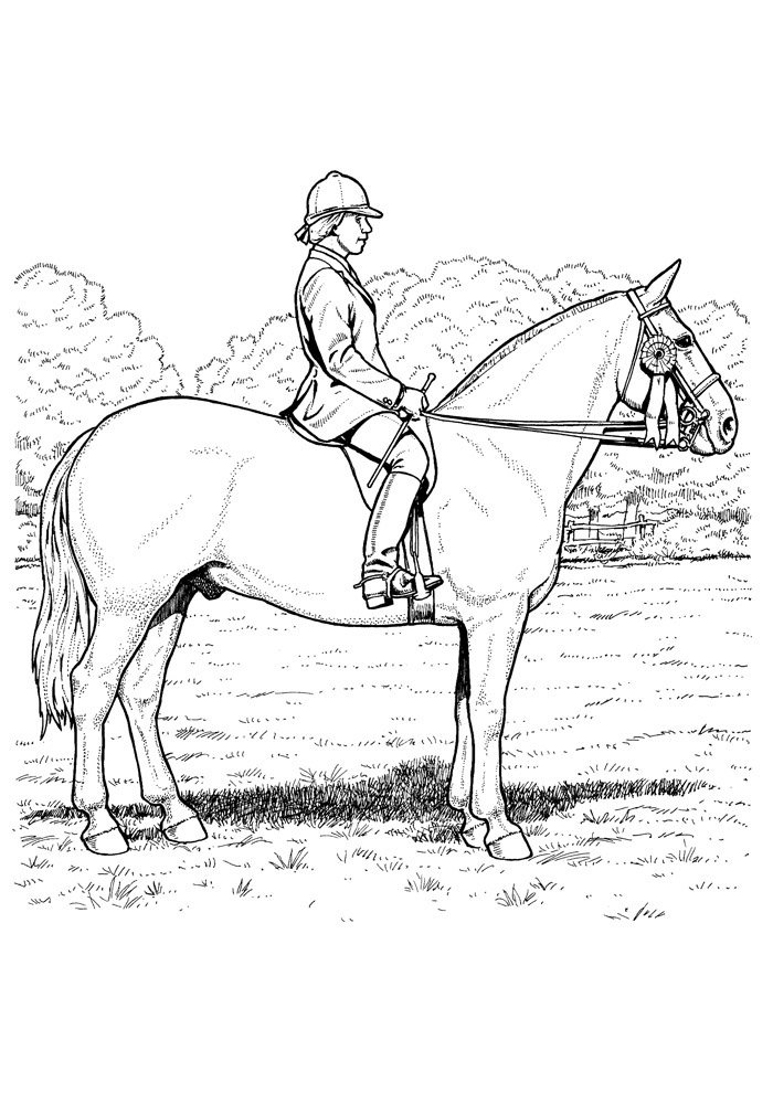 Horse coloring page 75