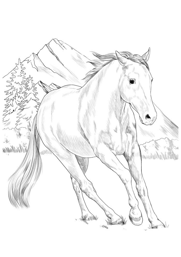 Horse coloring page 82