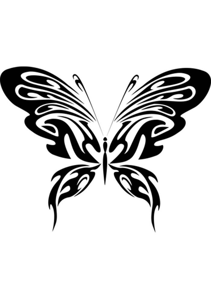 adult coloring butterfly