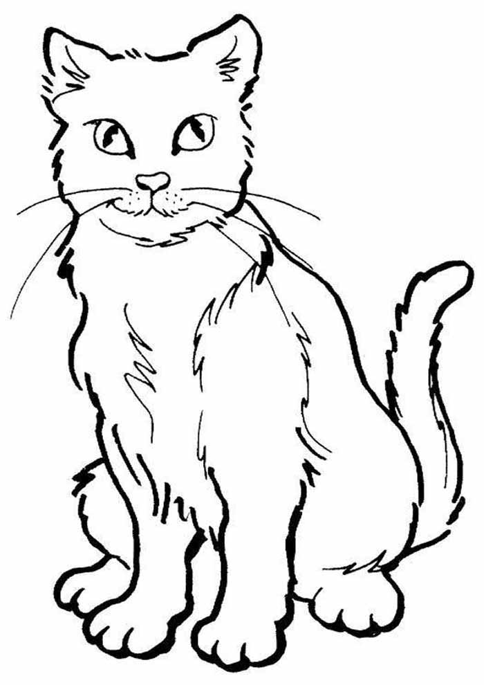 beautiful cat coloring page