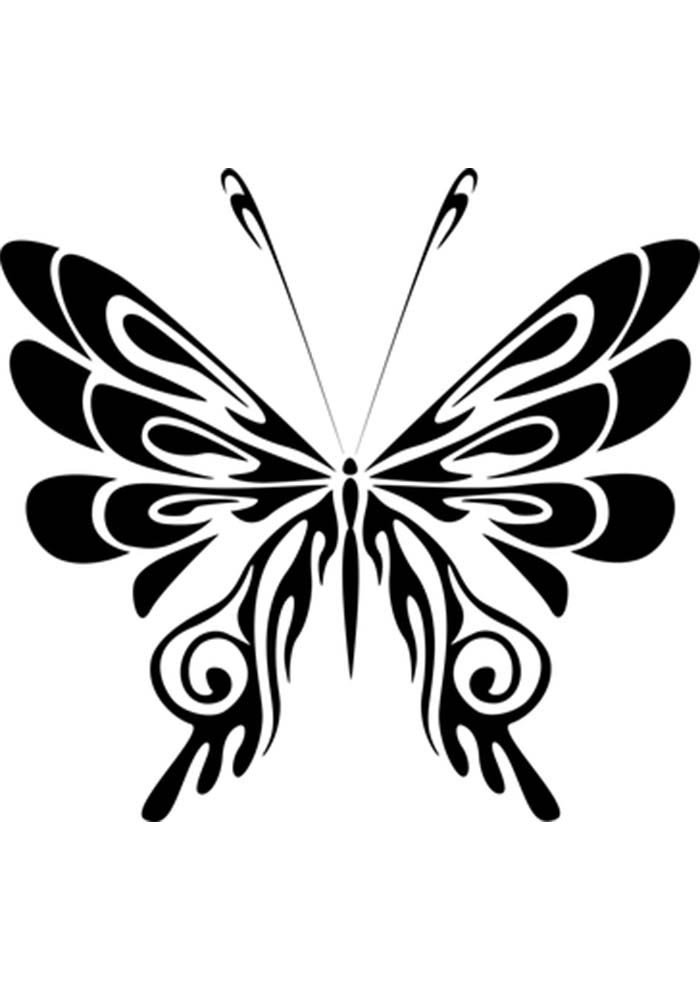 butterfly colouring image