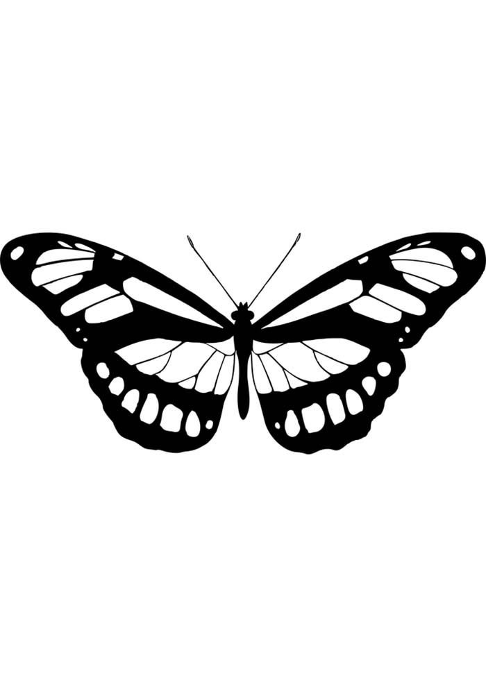 butterfly colouring template