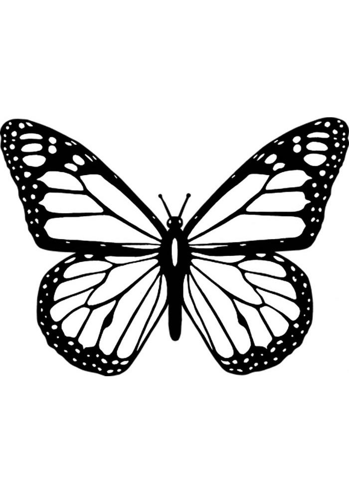 butterfly to colour in