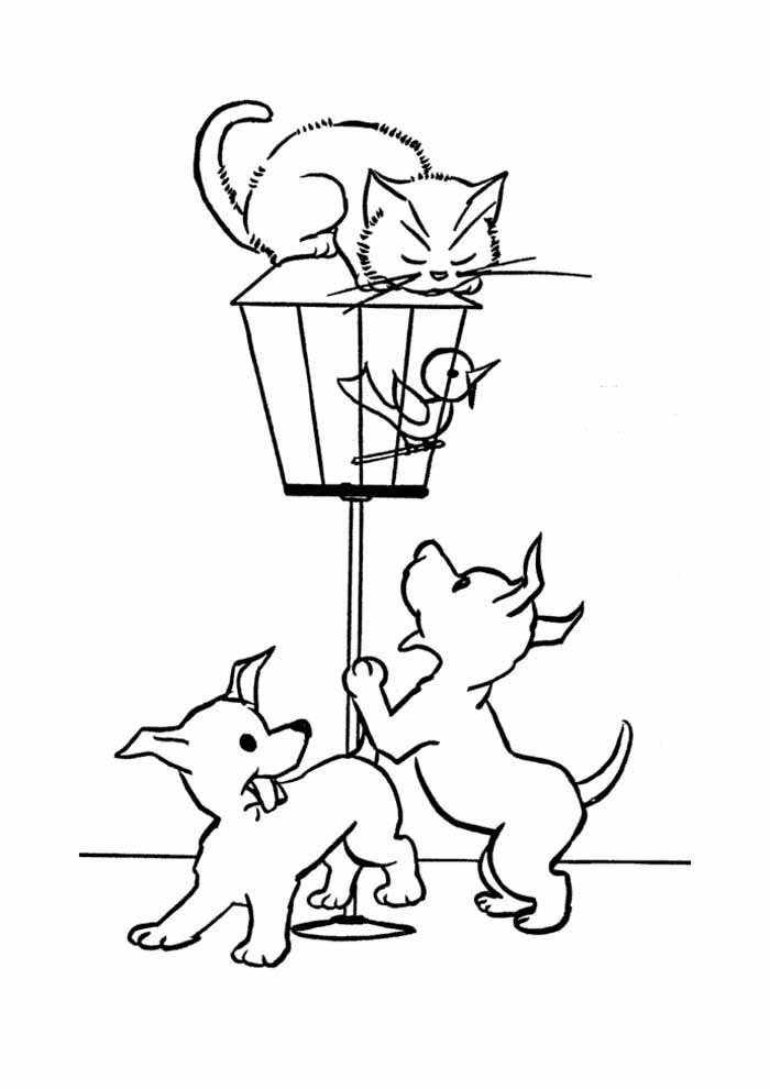 cat coloring page on the cage