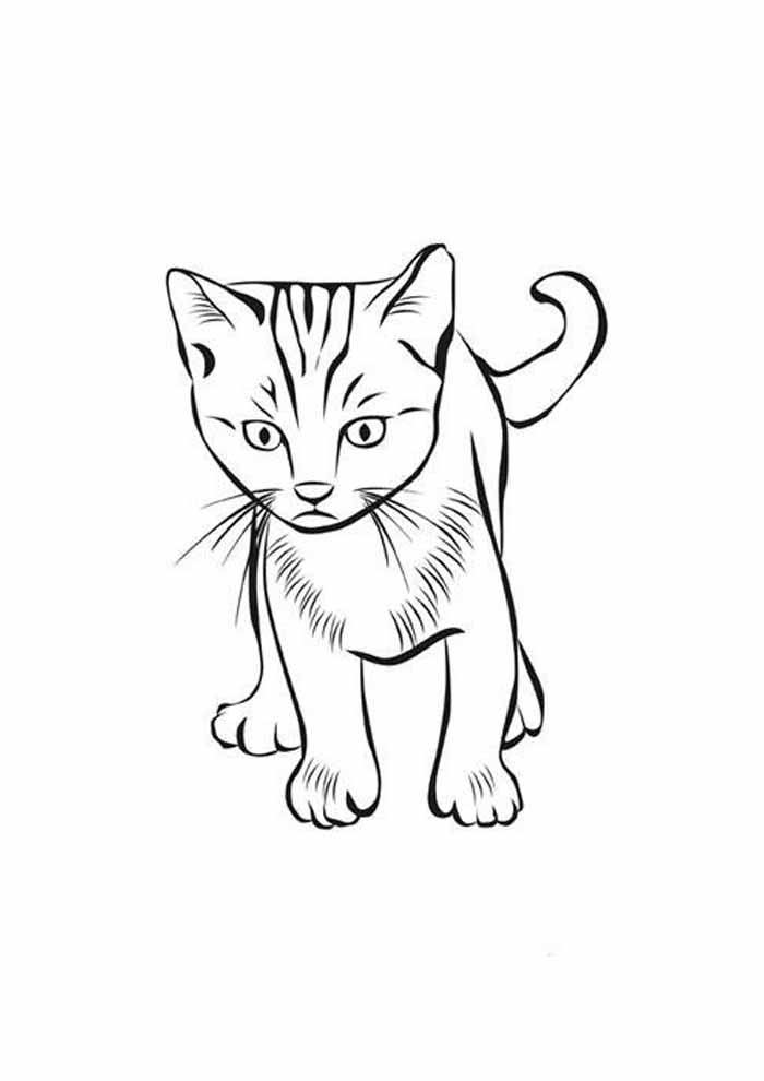 cat coloring page scared