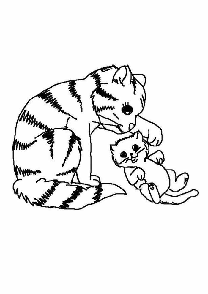 cat coloring page with baby