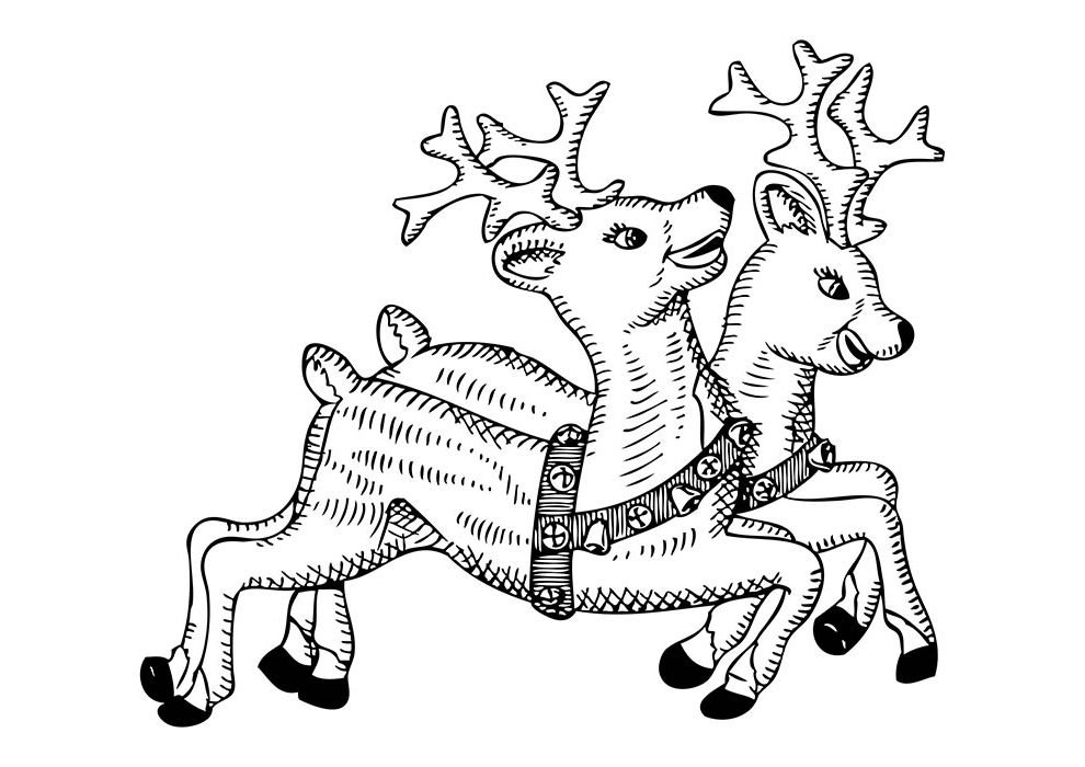 christmas coloring page two reindeer