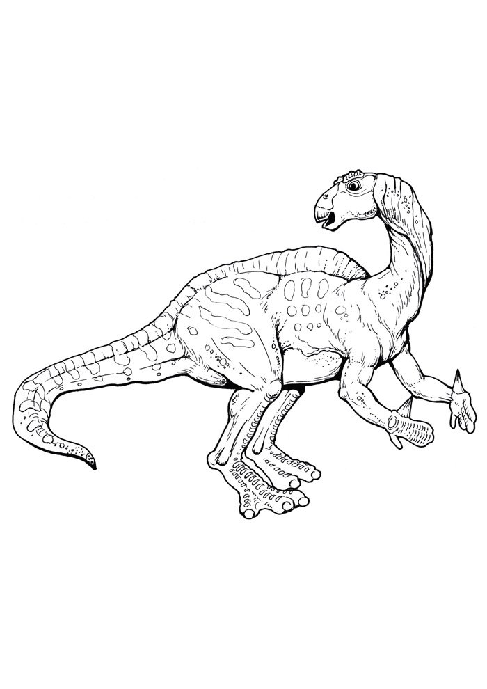 dinosaur coloring page 58