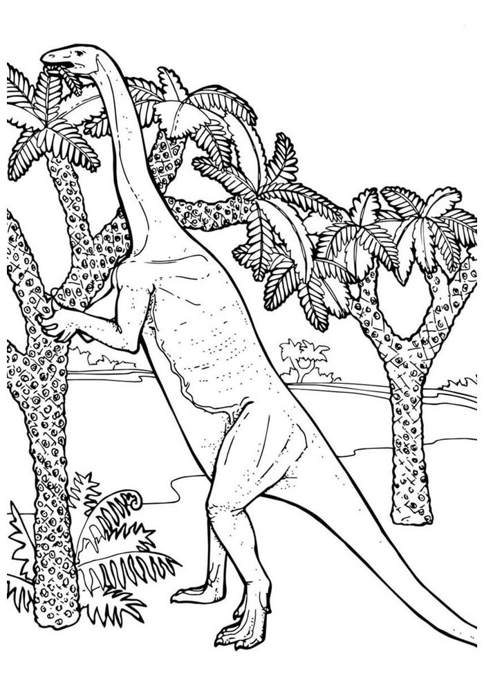 dinosaur coloring page 63