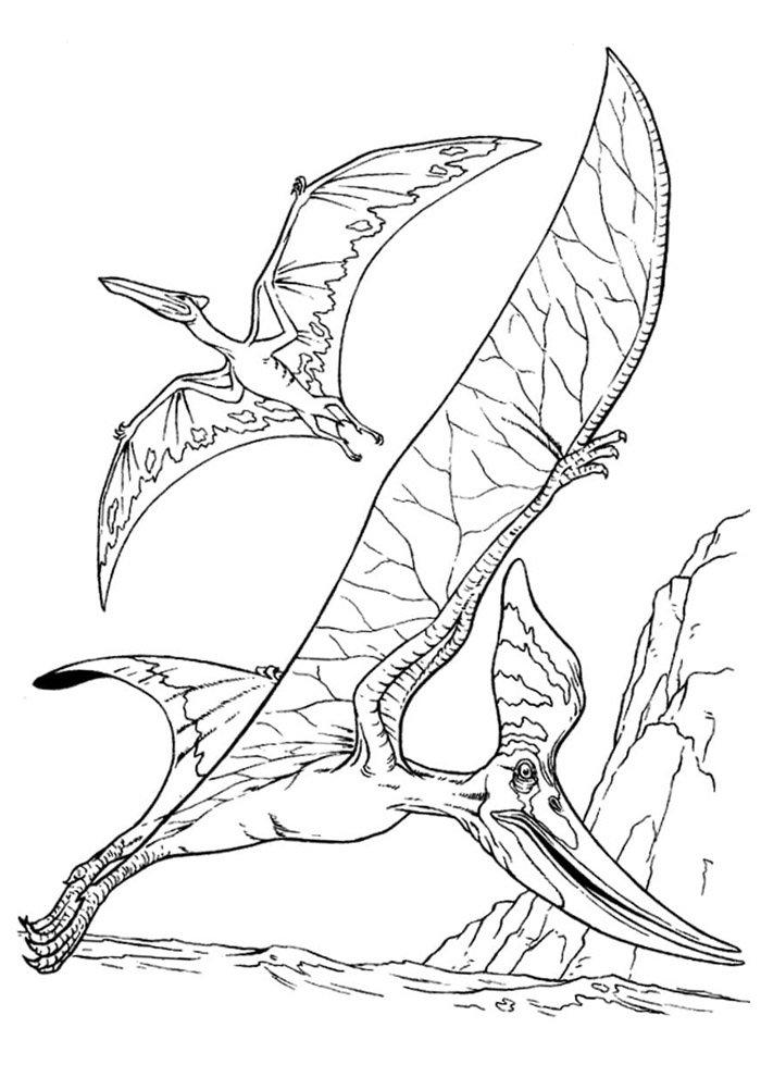 dinosaur coloring page 69