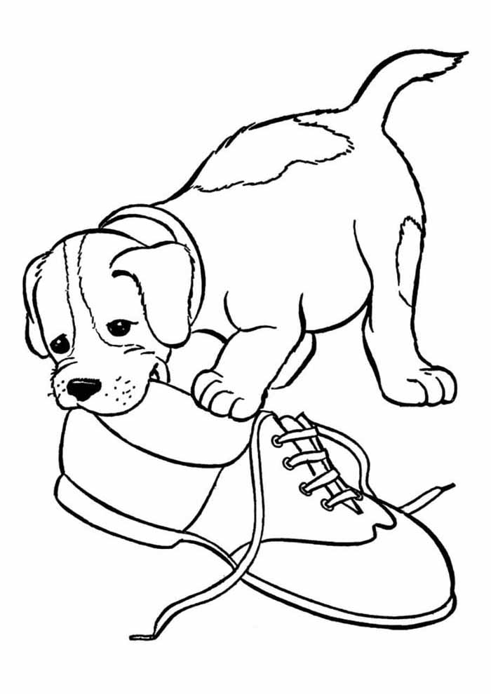 dog coloring page biting shoes
