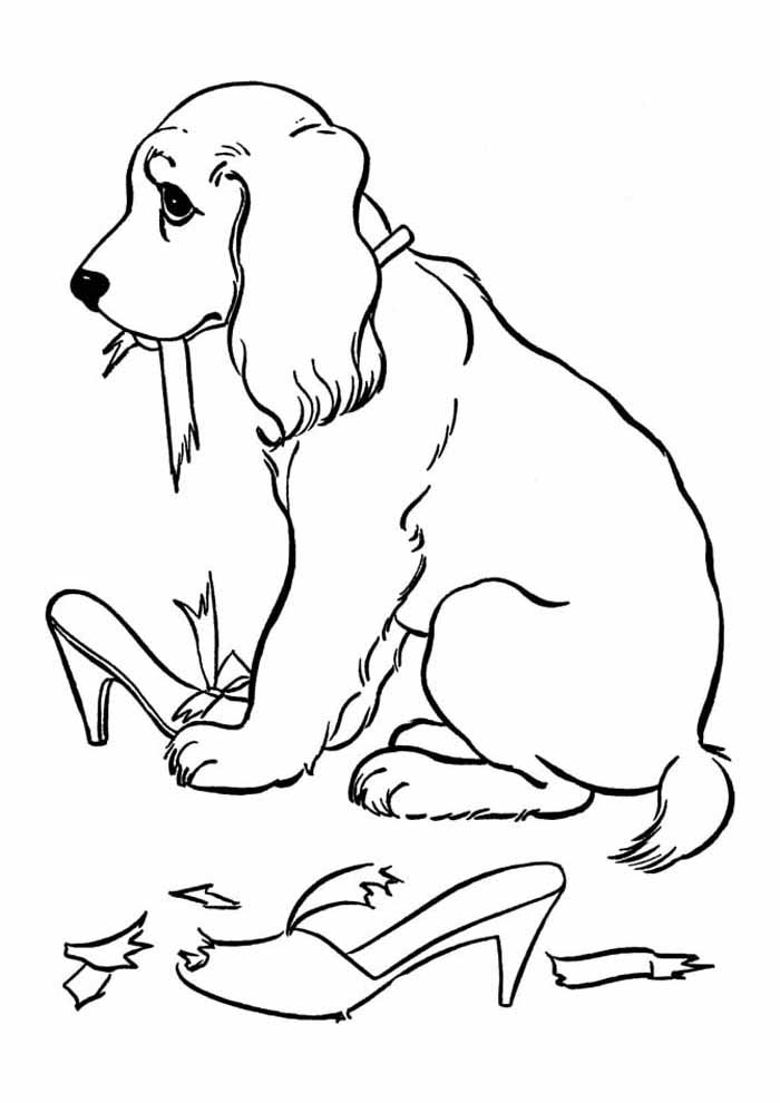 dog coloring page eat shoes