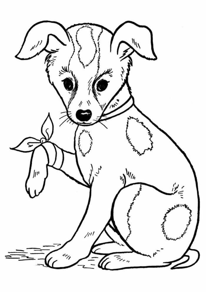 dog coloring page hurt