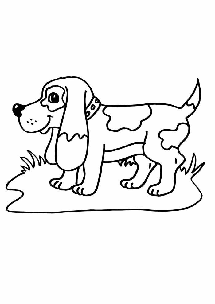 dog coloring page on the grass