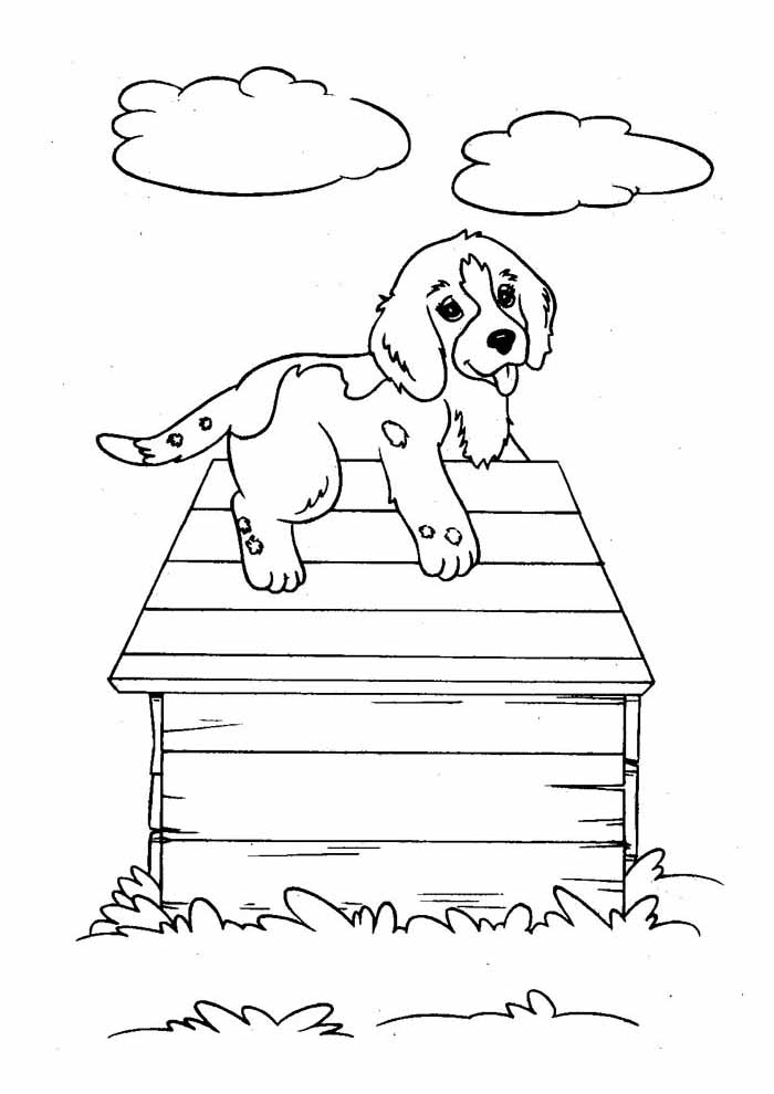 dog coloring page on the roof