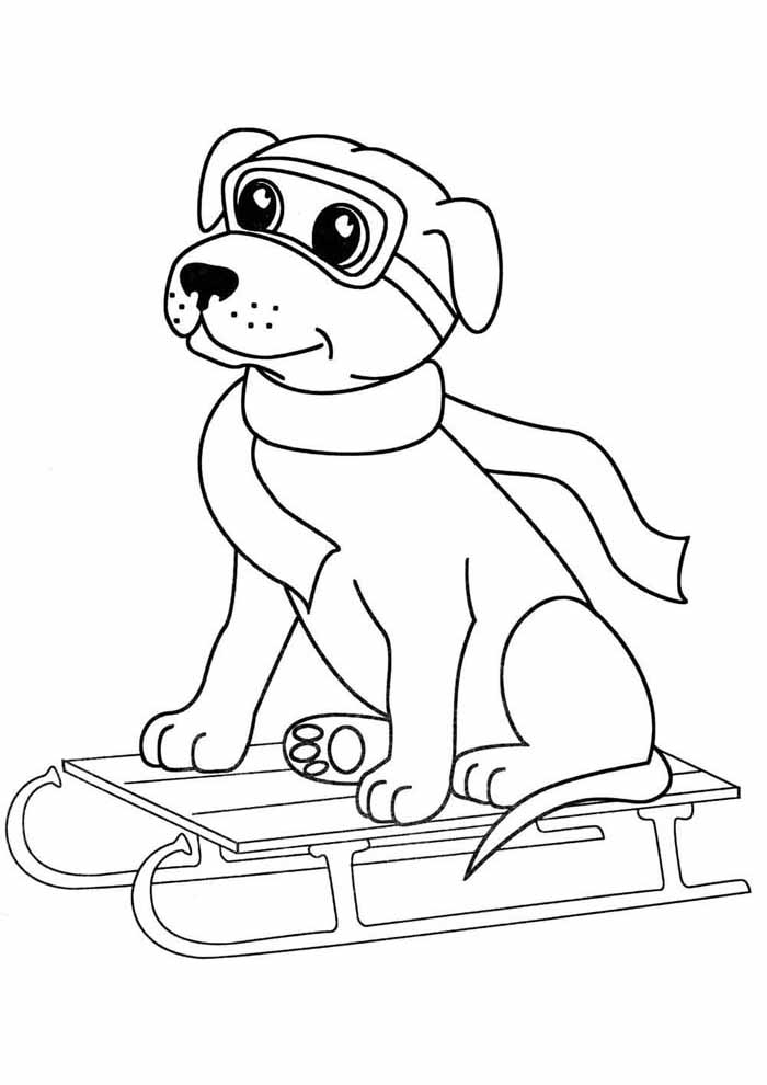 dog coloring page skiing