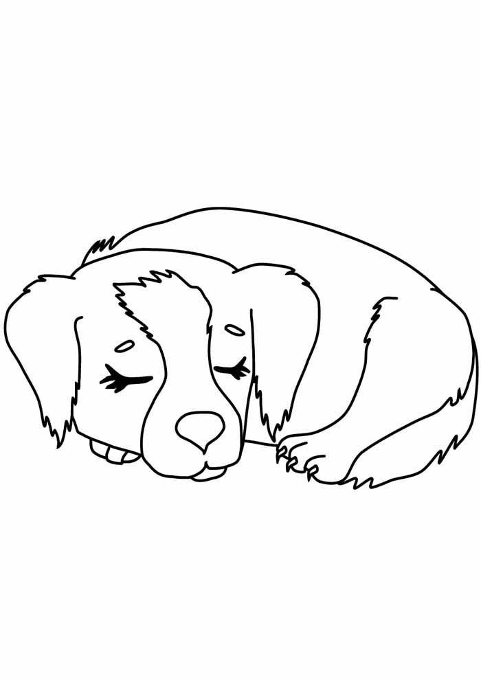 dog coloring page sleeping