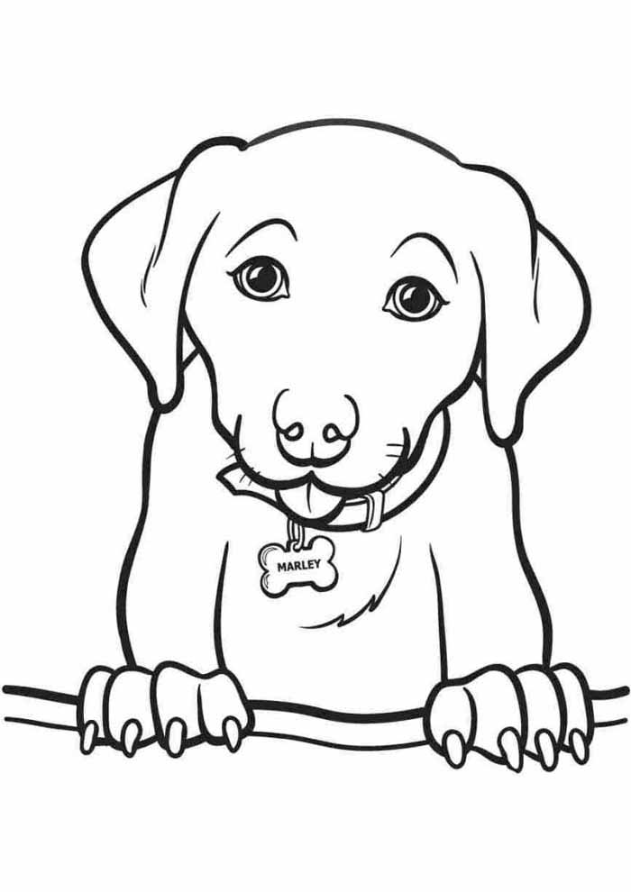 dog coloring page standing