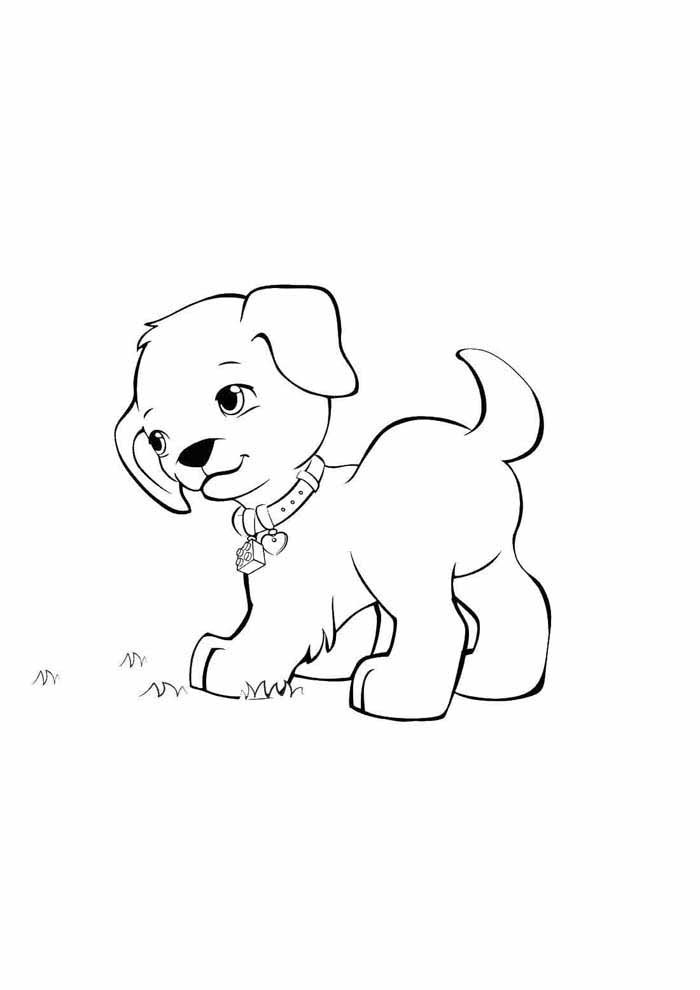 dog coloring page watching