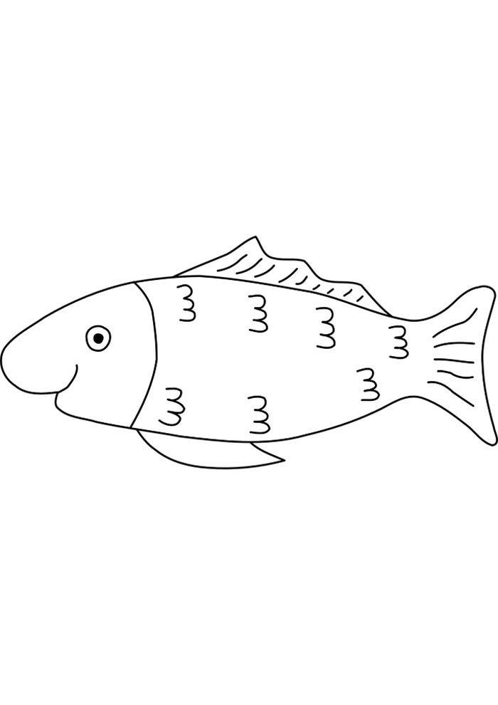 fish coloring image