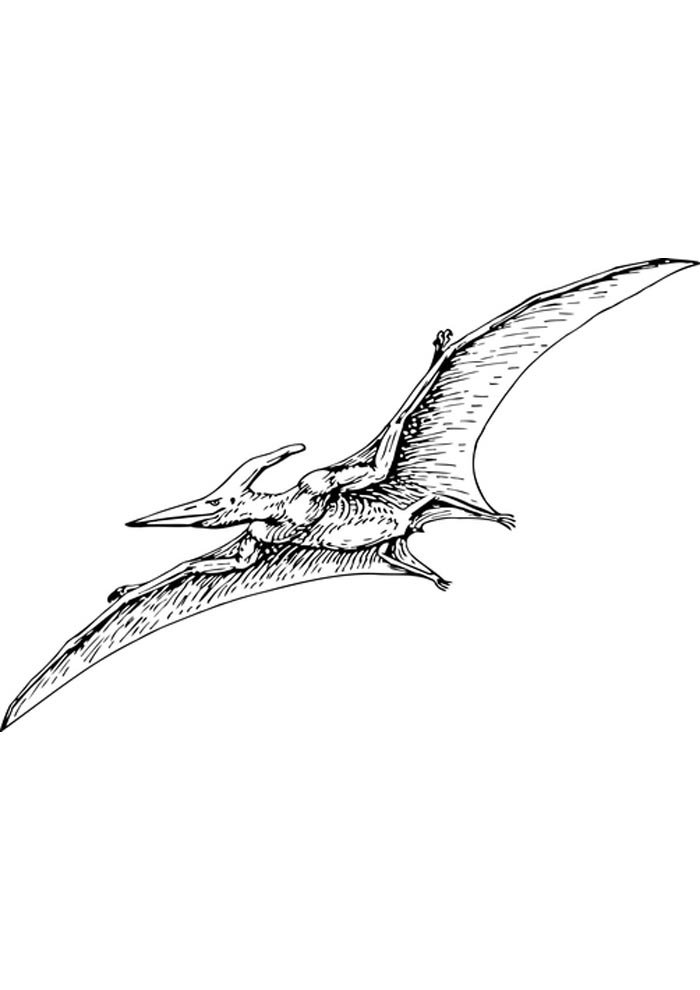 flying dinosaur coloring page