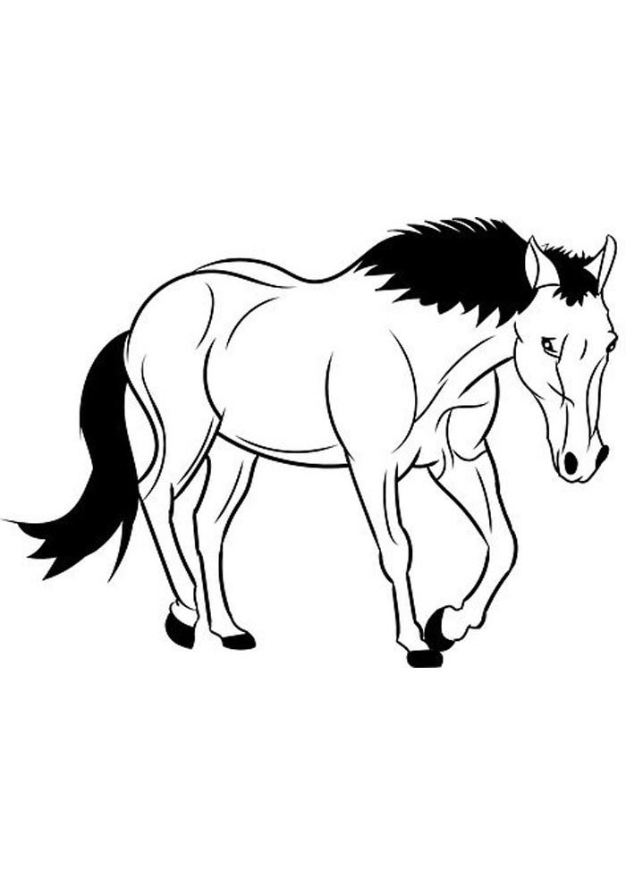 horse coloring page that look real