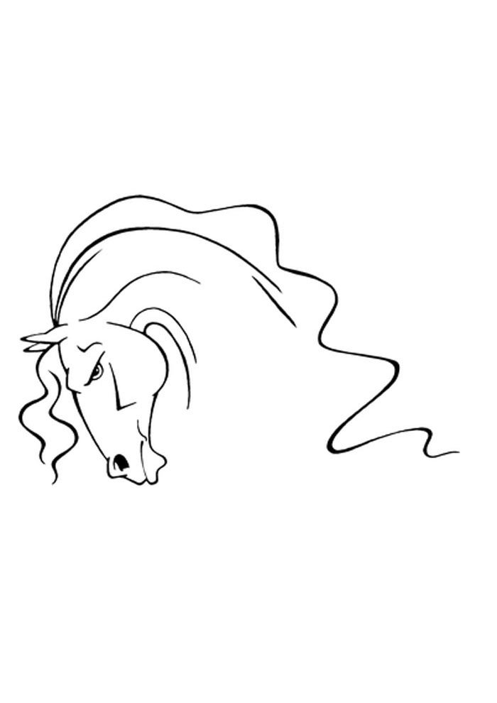 horse face coloring page to print