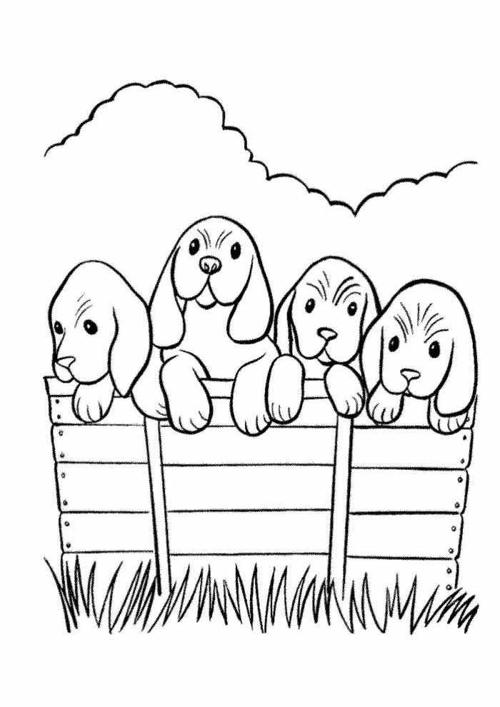 little dogs coloring page