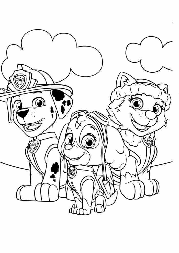 paw patrol coloring page marshall skye and everest