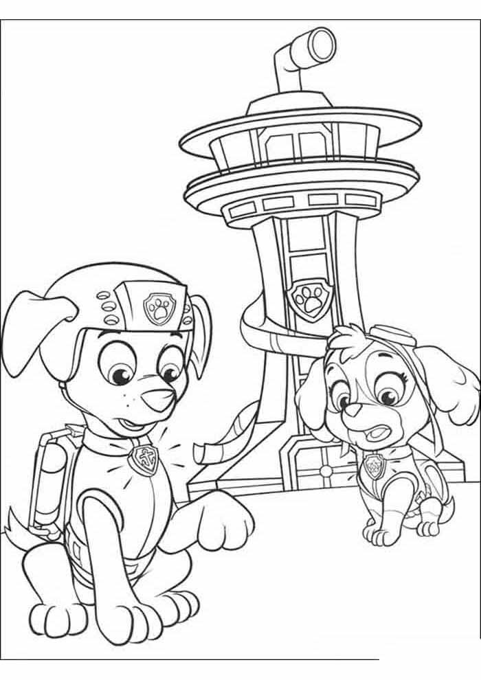 paw patrol coloring page zuma and skye worried