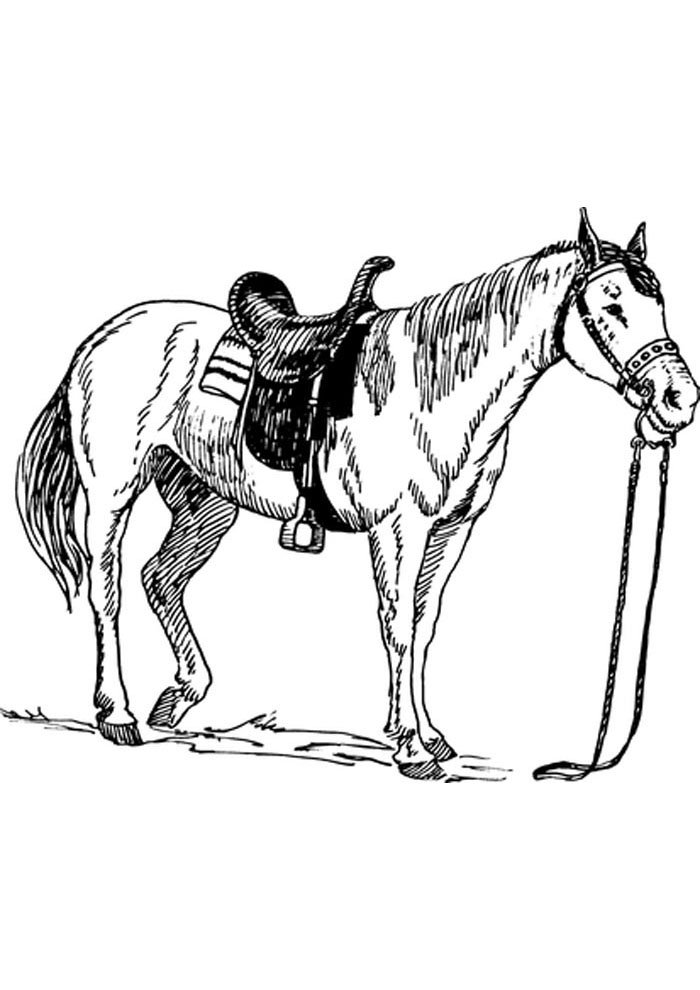 printable horse coloring page