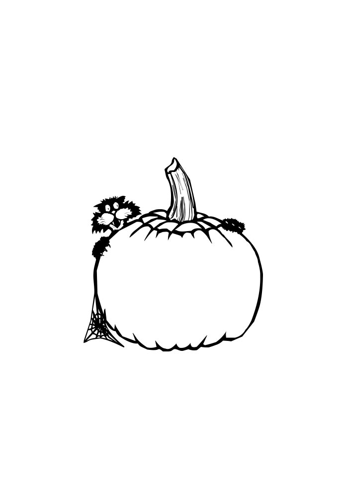 pumpkin coloring page and a cat