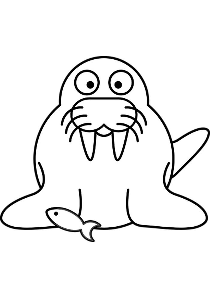 seal and fish coloring page