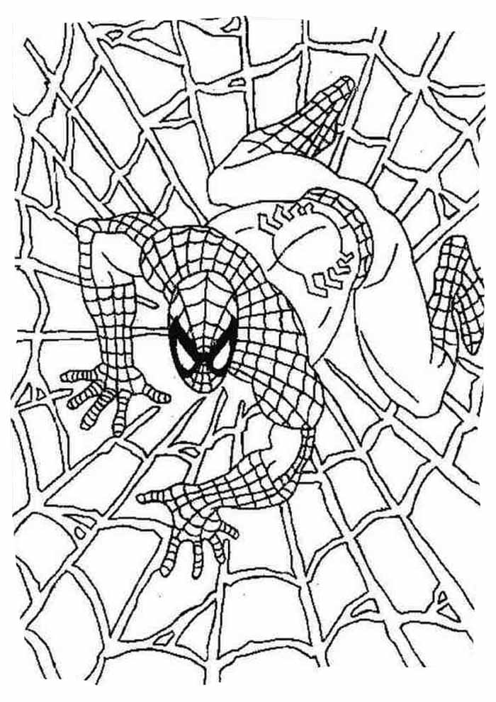 spiderman coloring page 10