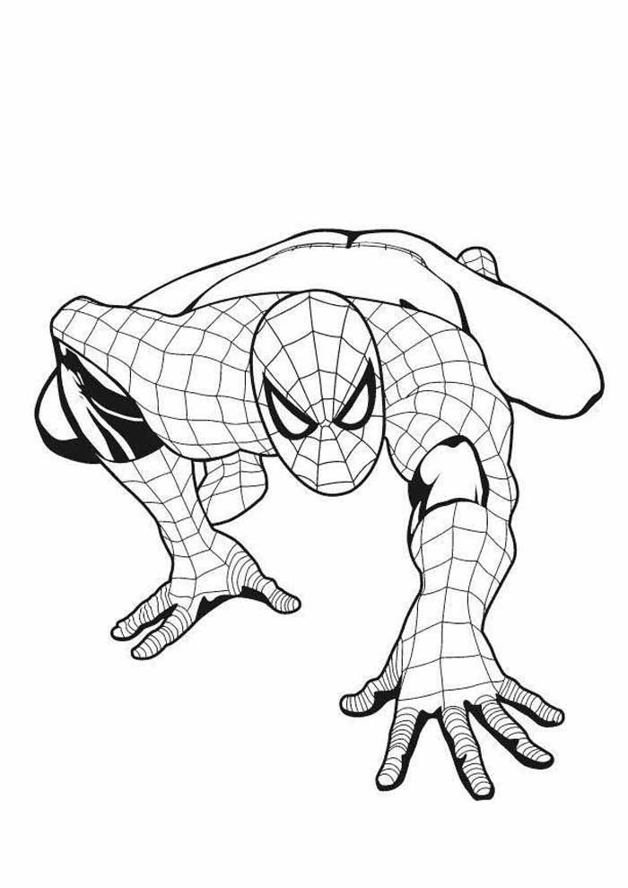 spiderman coloring page 22