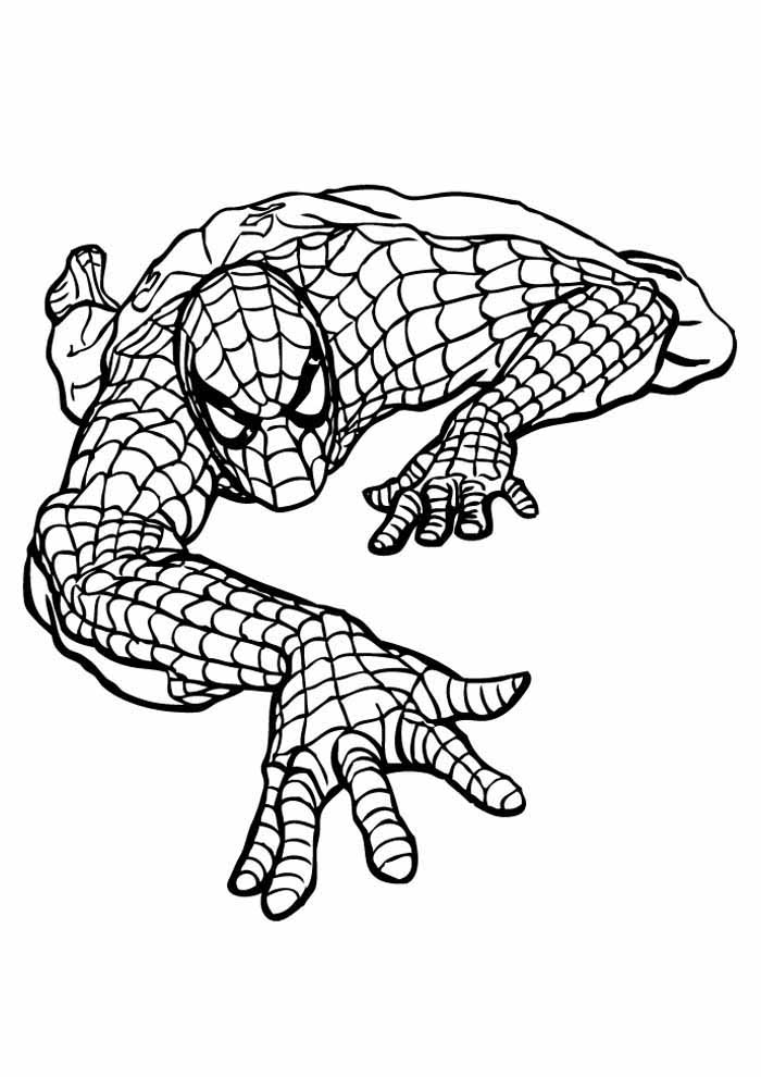 spiderman coloring page 31