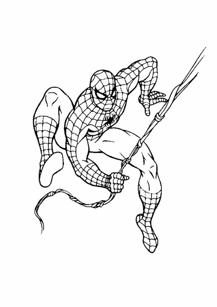 spiderman coloring page 4
