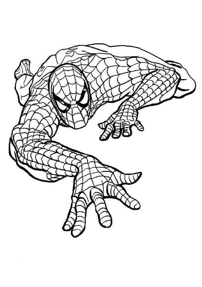 spiderman coloring page 9