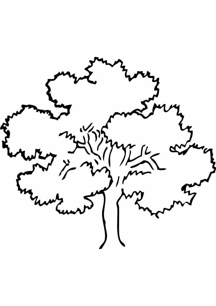 tree coloring page big